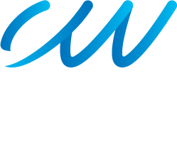 customwebsites logo footer